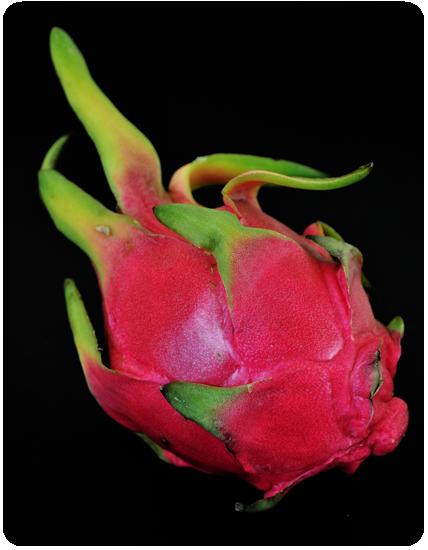 Le pitaya, ou fruit du dragon