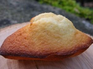 Madeleines… tout simplement.